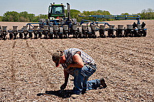 Corn Planting As Prices Drop On Speculation U.S. Planting Pace Will Accelerate